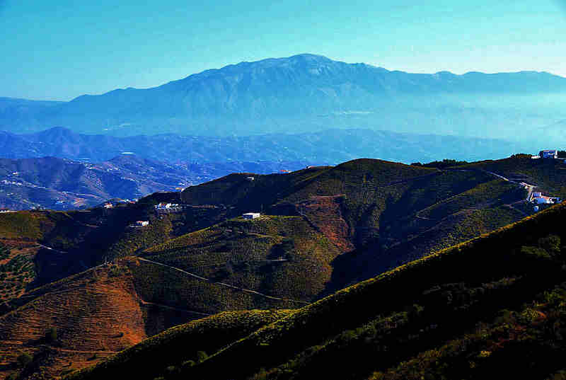 Monte de Malaga Buggy Tour